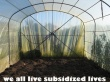 we all live subsidized lives
